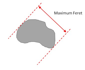 The maximum Feret diameter