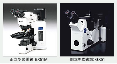 光学顕微鏡の種類