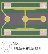 ウエハーサンプル上の回路パターン - MIX