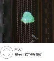 ウエハーサンプル上のフォトレジストの残渣 - MIX