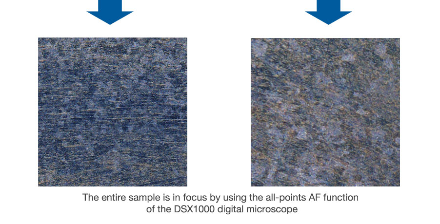 The entire sample is in focus by using the all-points AF function of the DSX1000 digital microscope