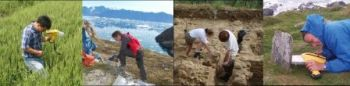 Olympus Innov-X handheld XRF for field archaeometry--collage